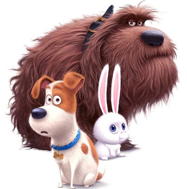 Pets: A Vida Secreta dos Bichos ganha novo trailer legendado com ...