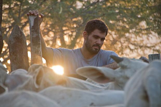 Crítica: Tudo parece natural em Boi Neon, filme de sensibilidade extraordinária