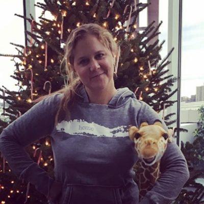Amy Schumer compra a fazenda em que cresceu como presente de Natal para seu pai