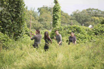 Rick descobre a existência do Reino em cena inédita de The Walking Dead