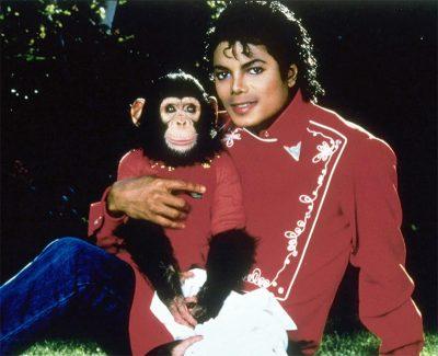 Chimpamzé de Michael Jackson vai virar filme do diretor de Thor: Ragnarok