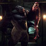 The Flash enfrenta Gorila Grodd em pôster e trailer de novo episódio