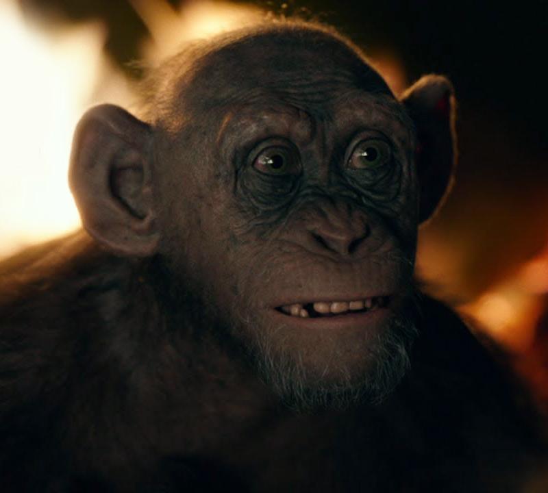 Quais mokutons de Hashirama e quais níveis do Susanoo de Madara aguentam esses jutsus:  - Página 2 Bad-ape-war-of-the-planet-of-the-apes