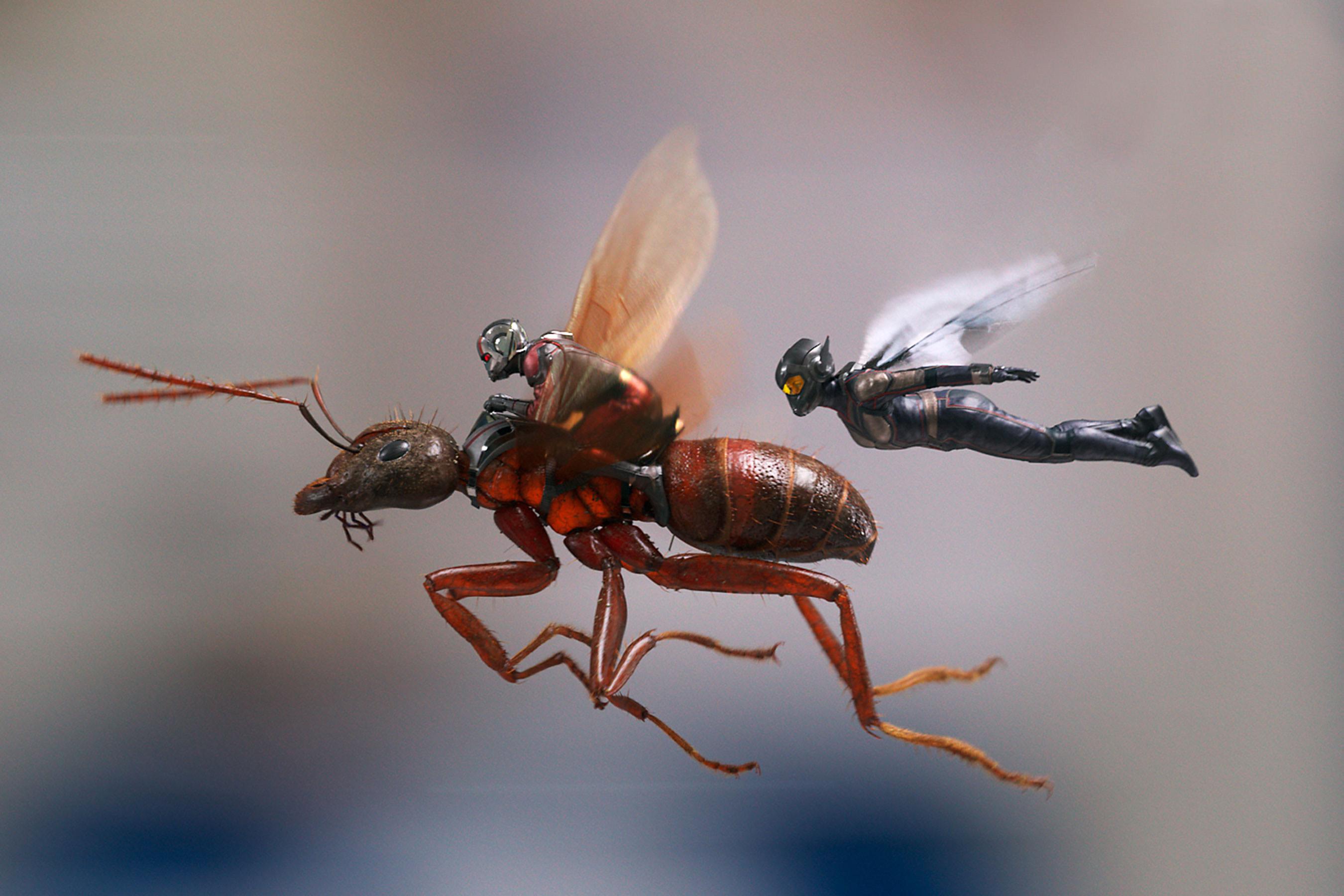 Filme do Homem-Formiga e a Vespa ganha novas fotos