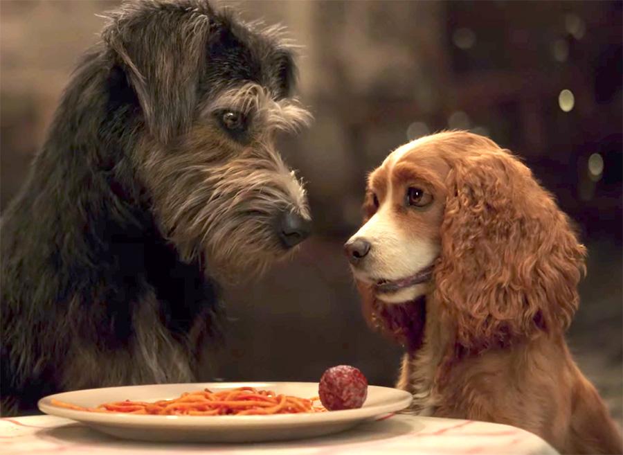 A Dama e o Vagabundo: Cena icônica do jantar romântico ganha vídeo | Pipoca Moderna