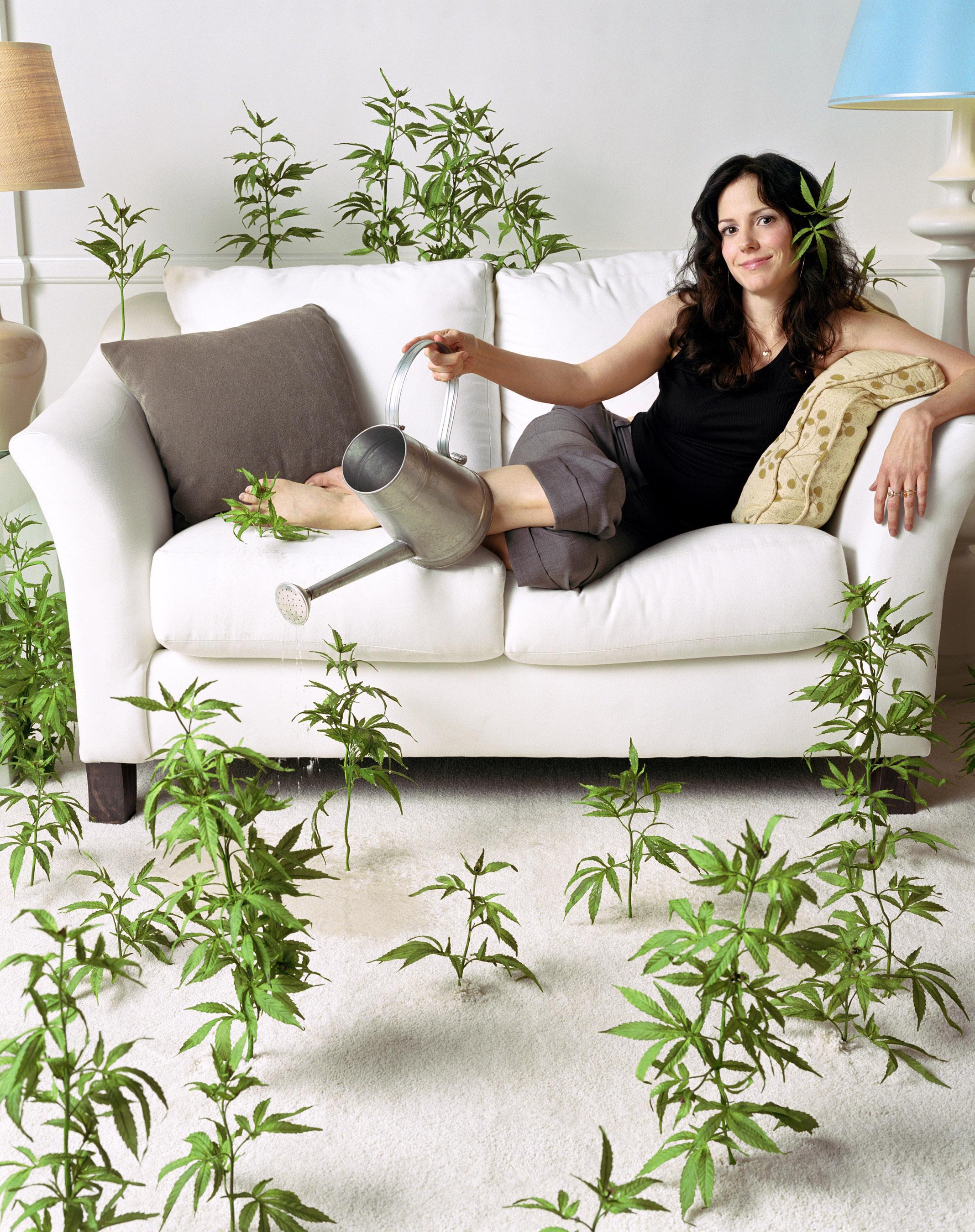 Weeds vai ganhar revival com Mary-Louise Parker | Pipoca Moderna